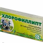 Хлорофиллипт при стоматите: описание и способ применения